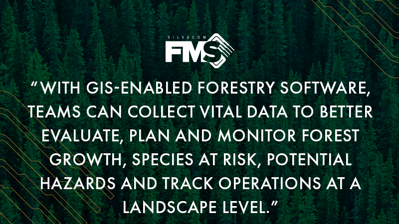 With GIS-enabled forestry software, teams can collect vital data to better evaluate, plan and monitor forest growth, species at risk, potential hazards and track operations at a landscape level.